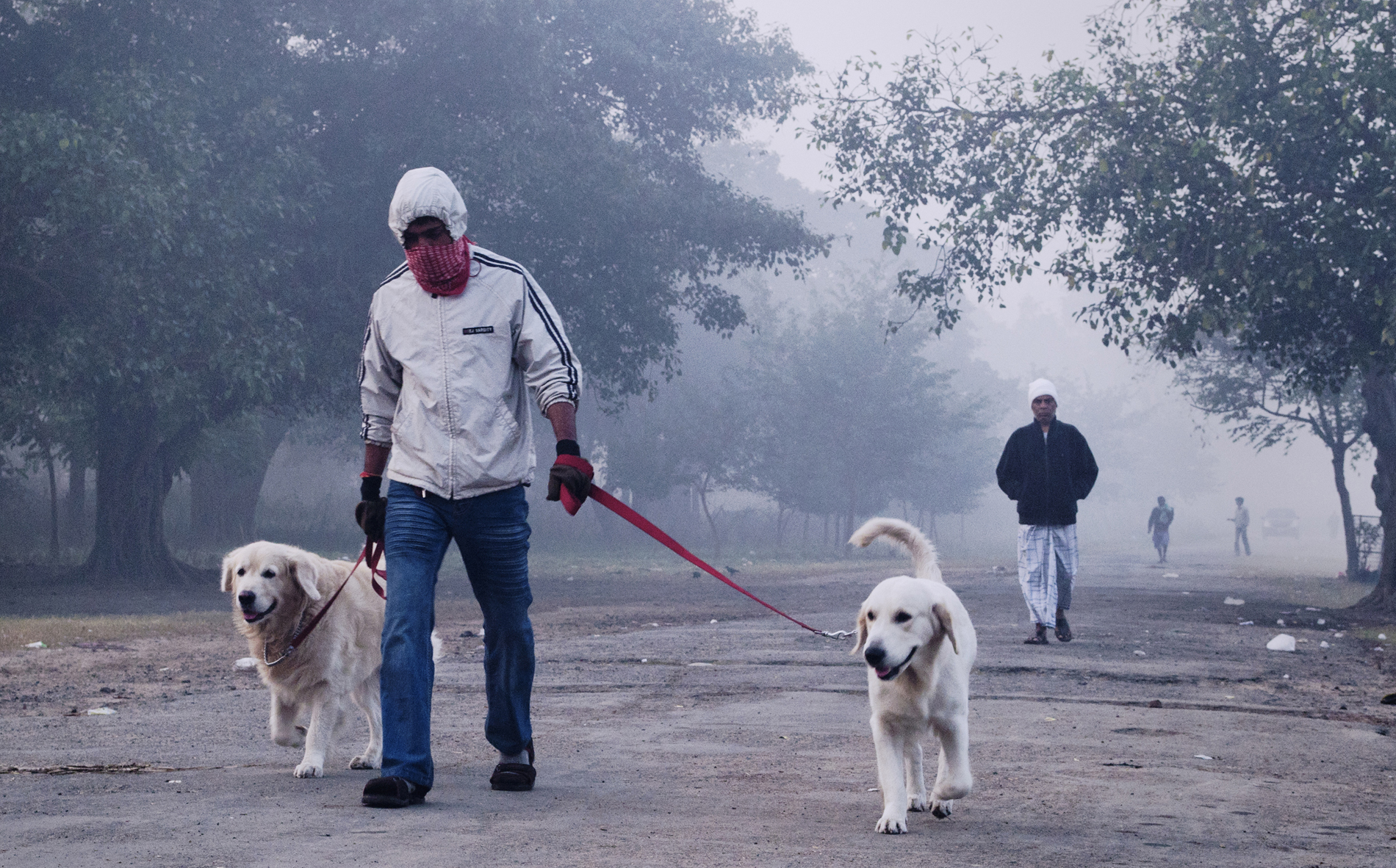 I took this picture at Maidan, Kolkata, West Bengal on a winter morning to capture the surreal essence of a misty morning.