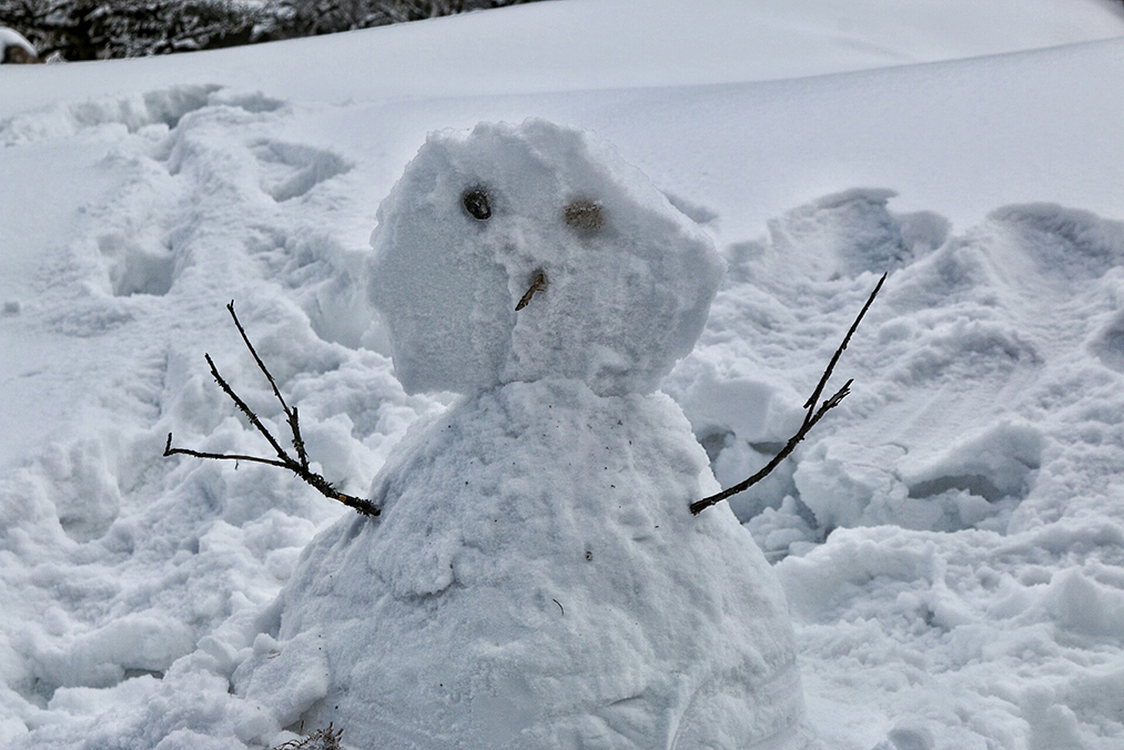 snowfall without a snowman is just not complete, snowman in yumthang valley, North Sikkim
