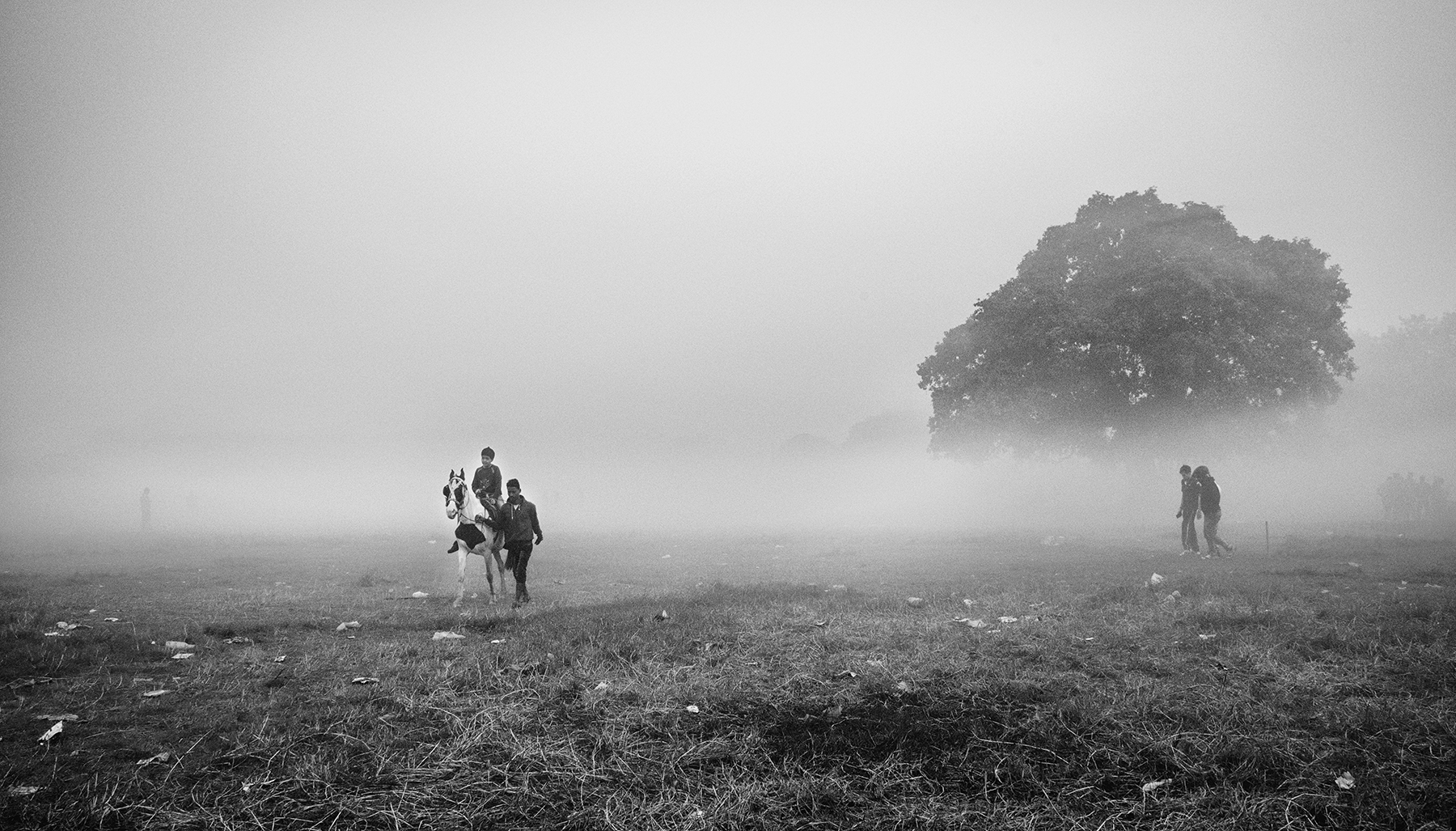 in a foggy chilled winter morning i saw a boy on a horse coming and fog surrounding.it looks like he come from heaven