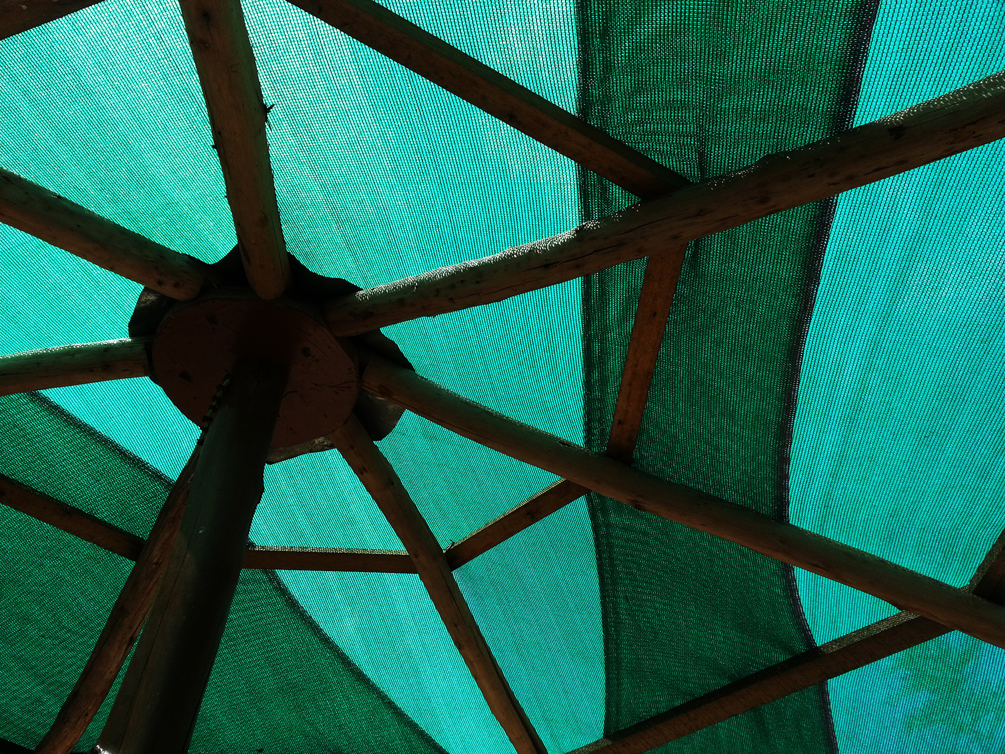 I was at one of the gazebo near the lake. found very interesting pattern on the top along with beautiful light passing though. Because of the light, the shades of green and the the different color tones are distinguishable.