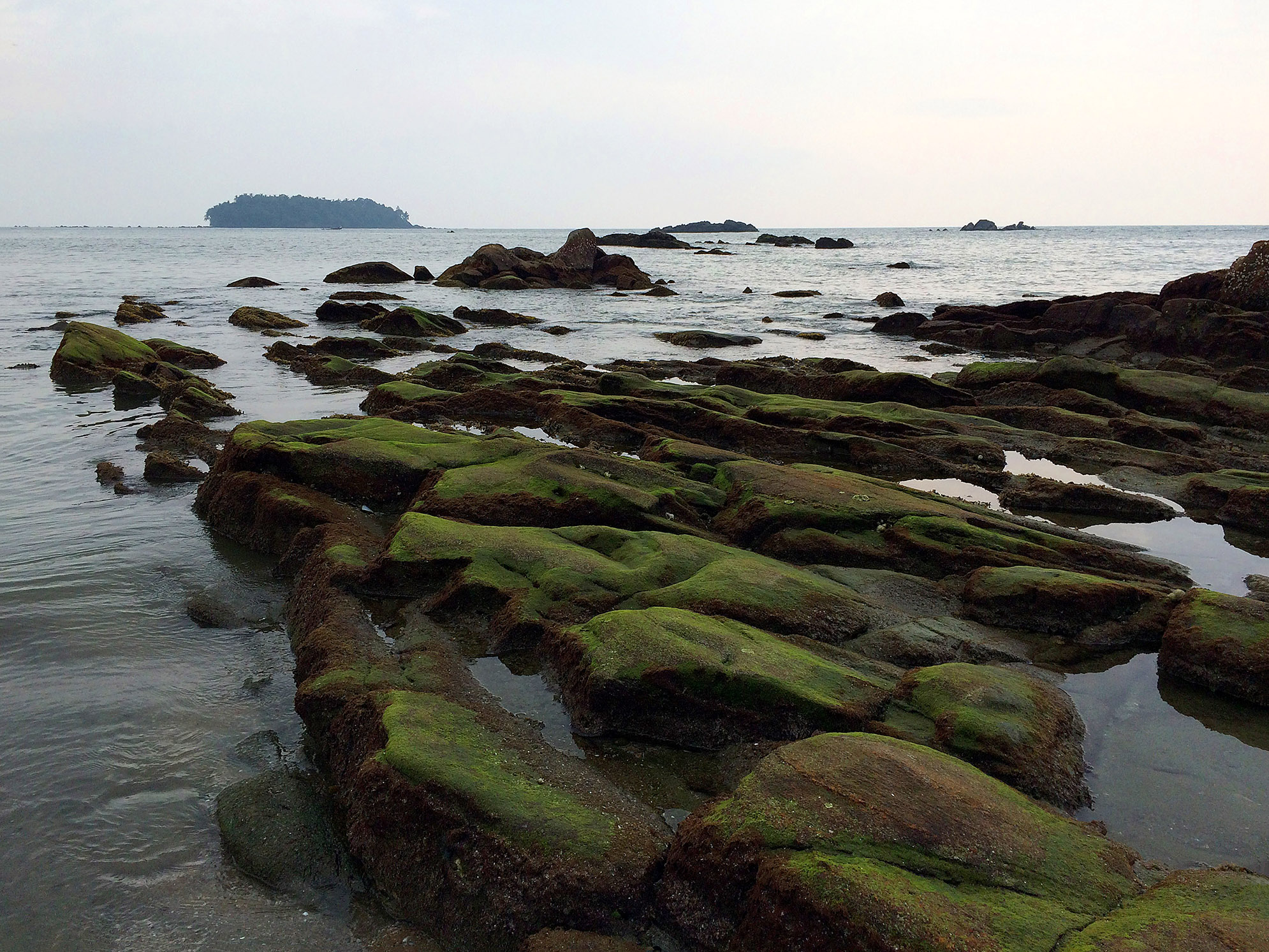 Rocks covered with Algae lead the eyes to the small island seen at the horizon -Kannur,kerela.