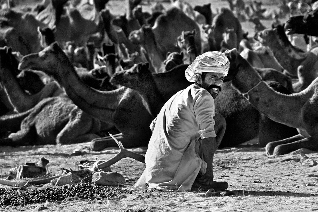 This photo is a vision of the Puskar Camel Fair ground