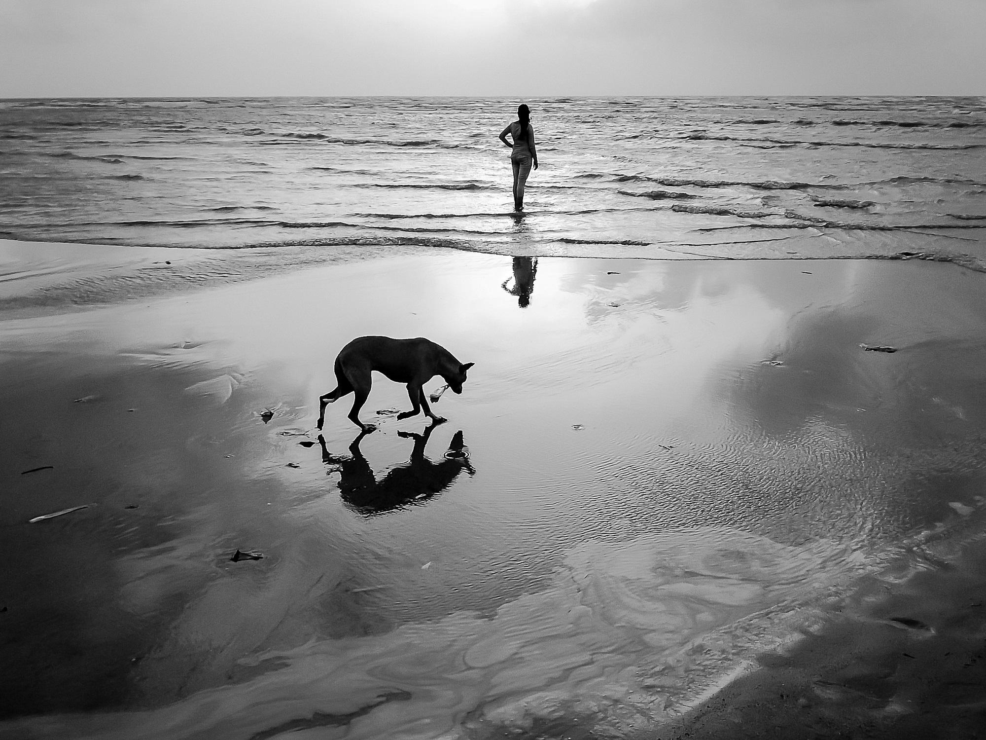A girl and Street dpg at a beach, Aksa Beach, Mumbai.