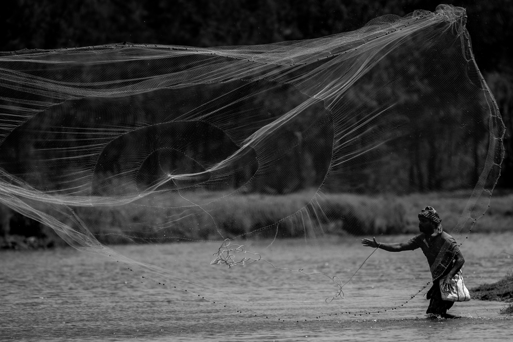 Normally the fishing net is thrown in a way that the design of the net is not completely visible from eye level. But this person was throwing  the net where I could see the design of the net like a chakravyuh where the fishes are the victims.