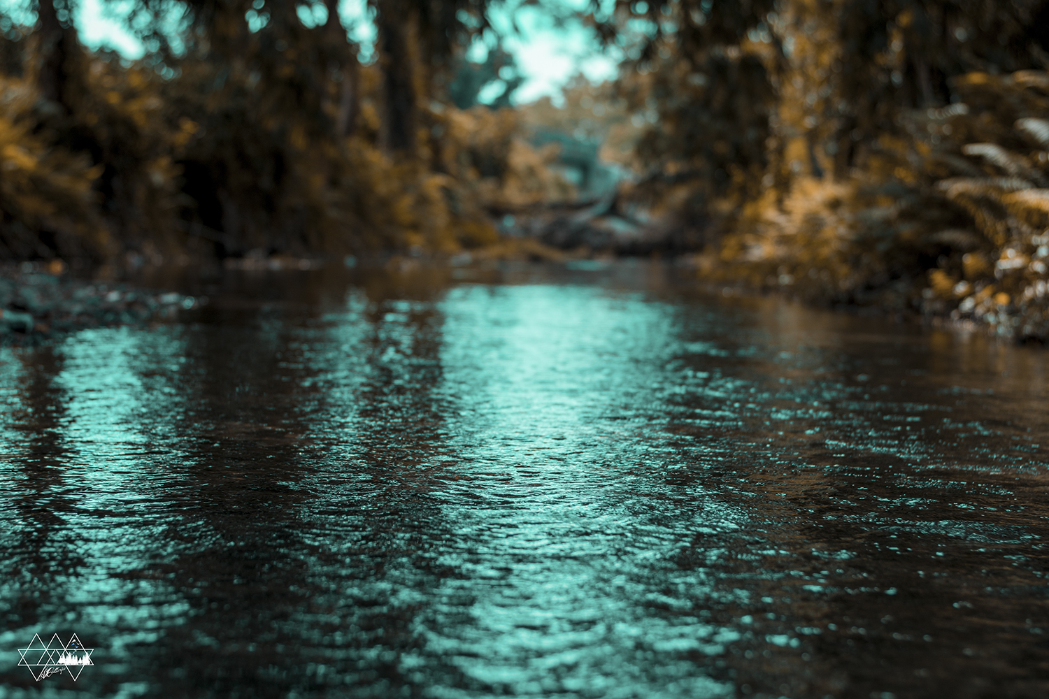 Weird is this water which keeps on flowing. It takes the shape of wherever you put it. but when it revokes it can destroy everything in its way. Love is somewhat like the water, it keeps on adjusting until one fine day
