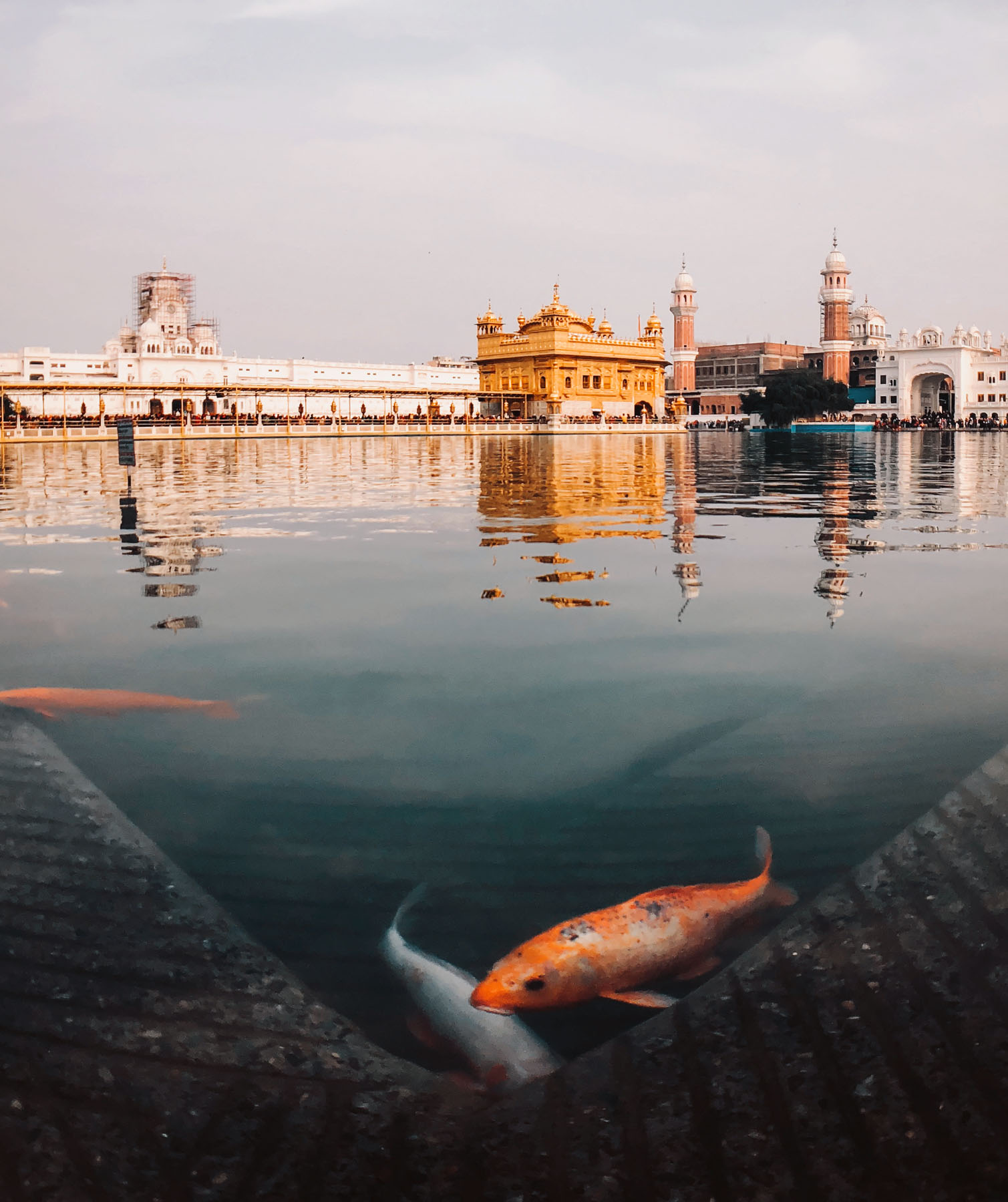 Knocking at his door to let us all in.