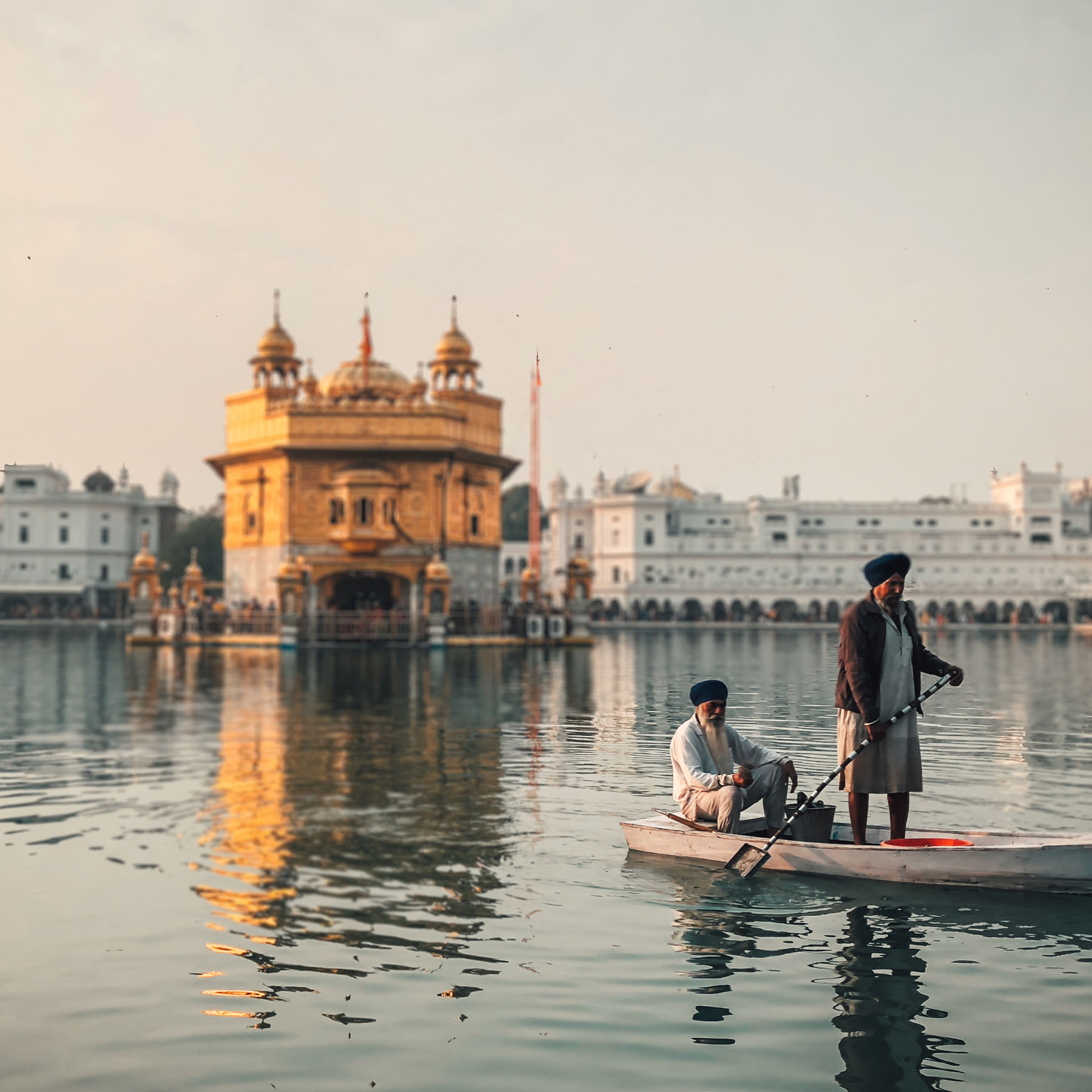 Serene beauty in silence. 