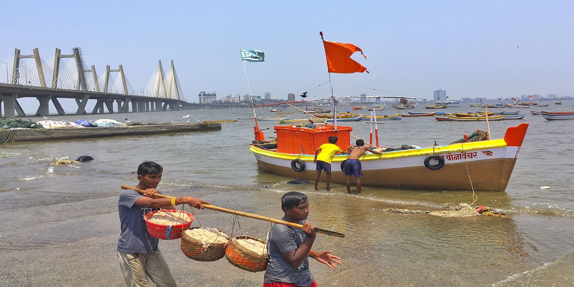 The boys at Worli Koliwada were moving all the fishes from the boat to their storage space so that they could sell them in the evening at the fish market. This is a regular process for them.