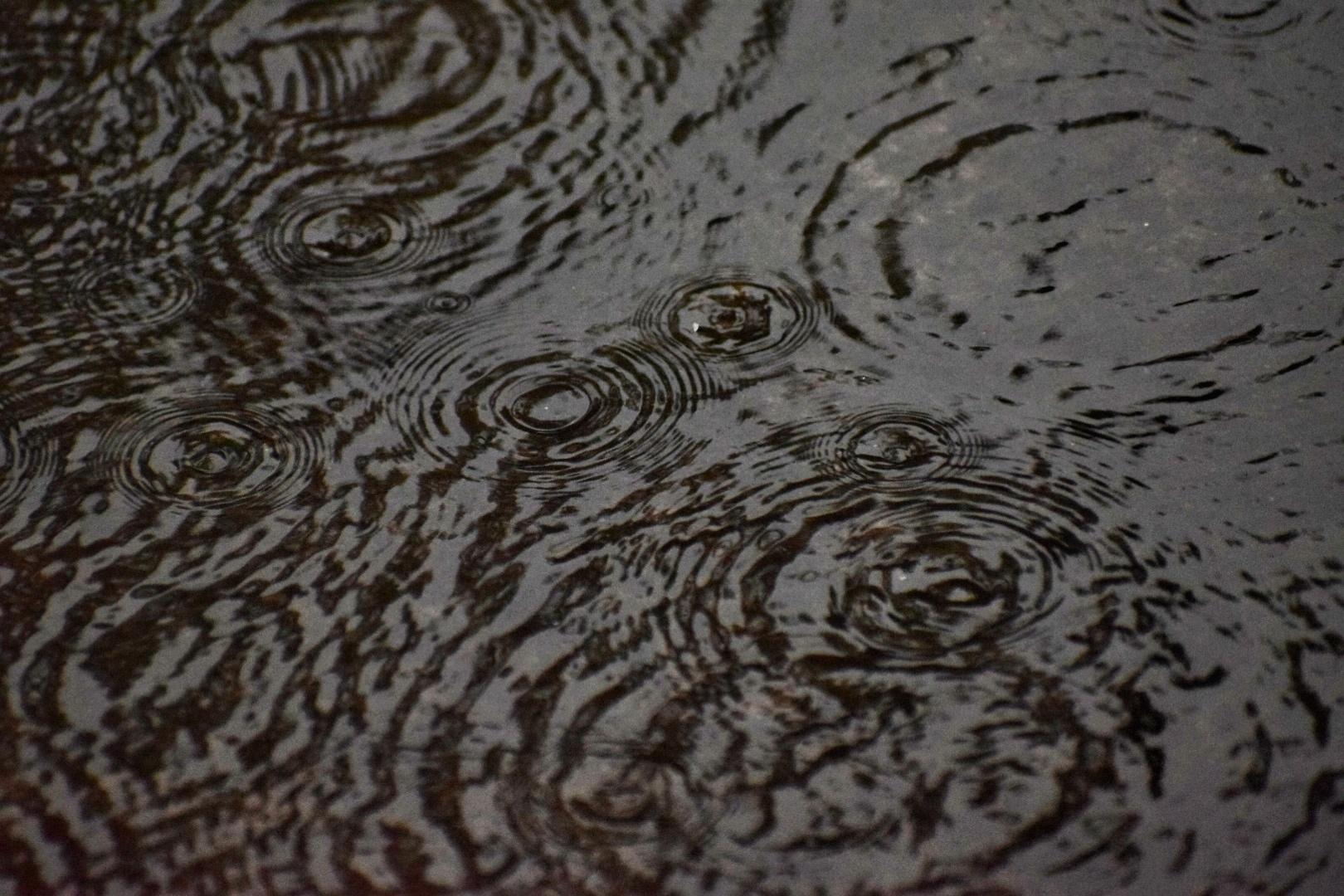 Intresting rainy season.....promotes d photography
