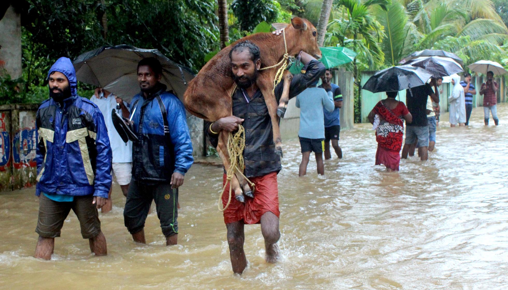 Kerala flood Starting August 15th  View Ernakulam