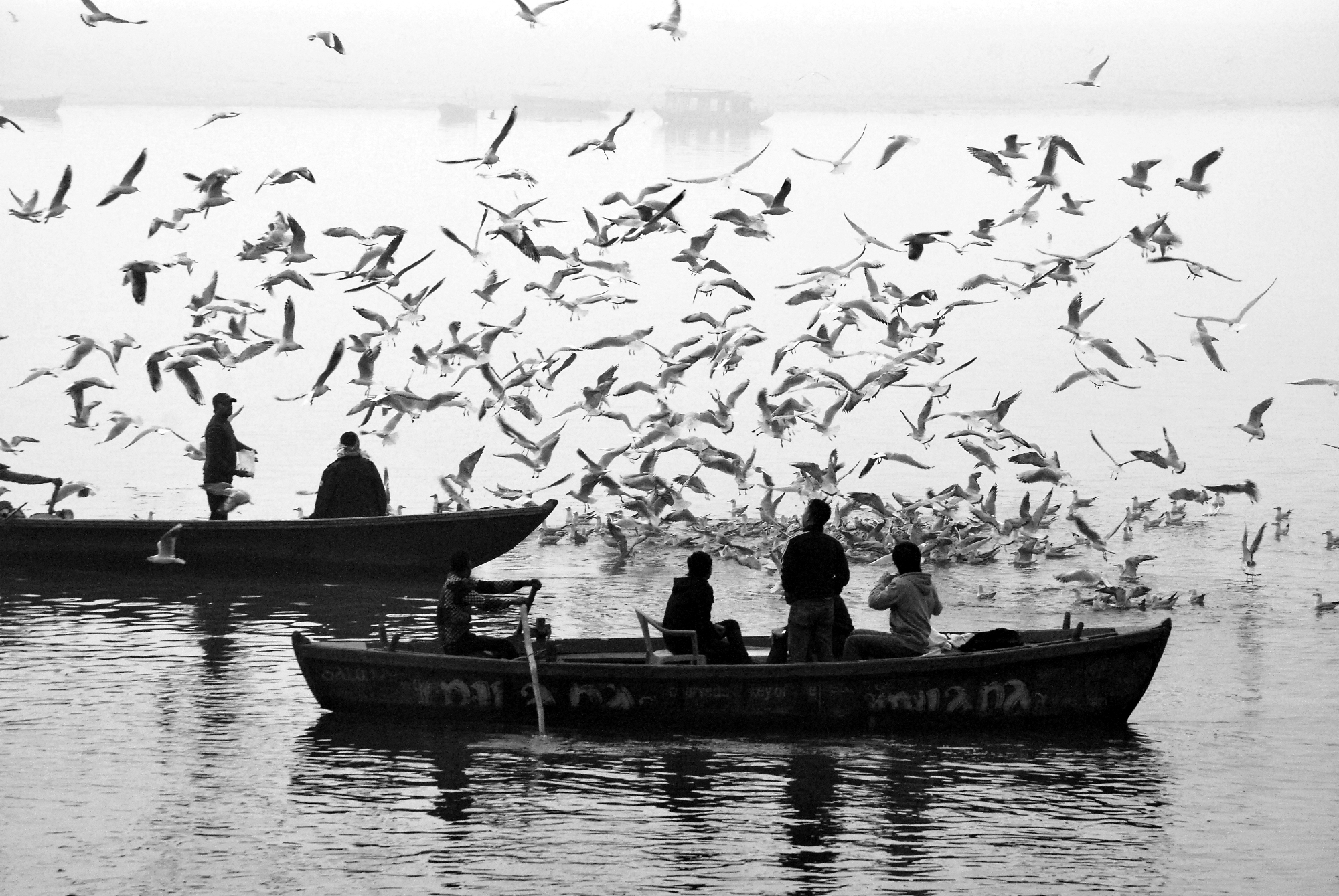 Morning atmosphere at Varanasi is always an attractive subject to all photographers of the World. I deem it is a Bird's paradise.
