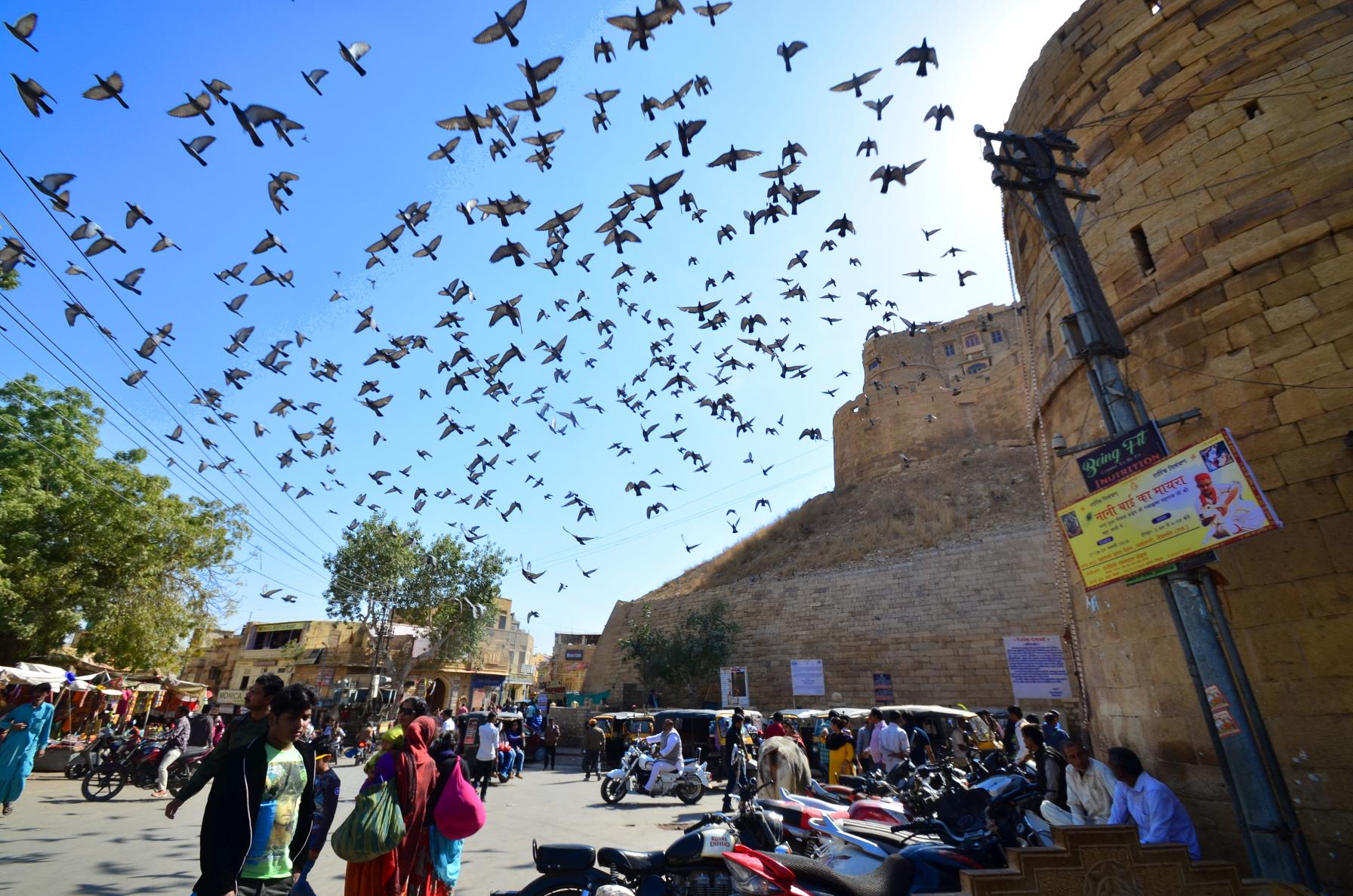 During visit at Jaisalmer, ,I have taken this picture near Sonar kella.