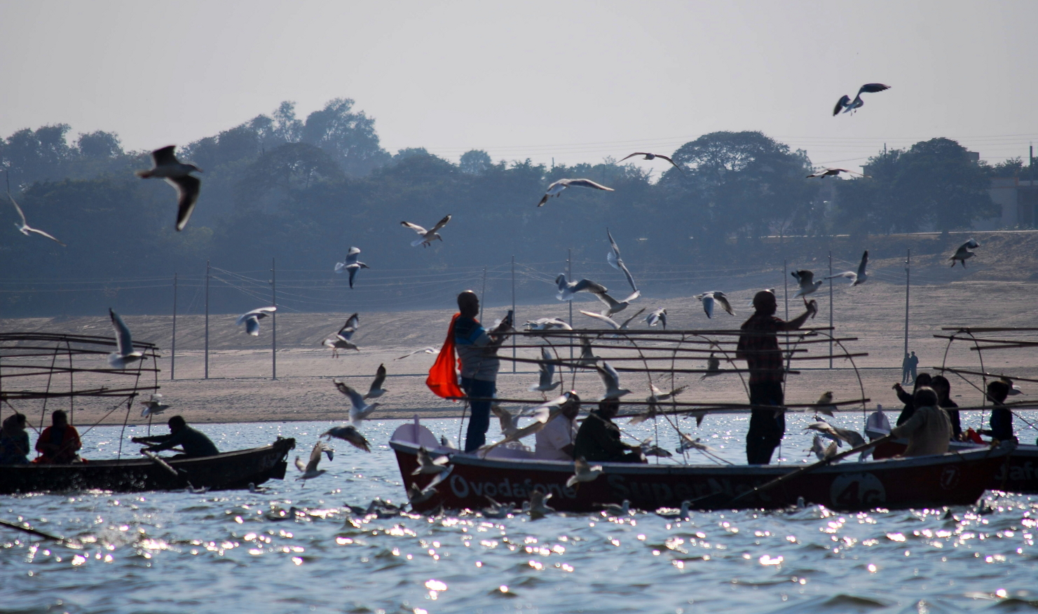 During boating at Triveni Sangam at Allahabad I have taken from this picture from a running boat. I deem the place  may be called as Bird's paradise.