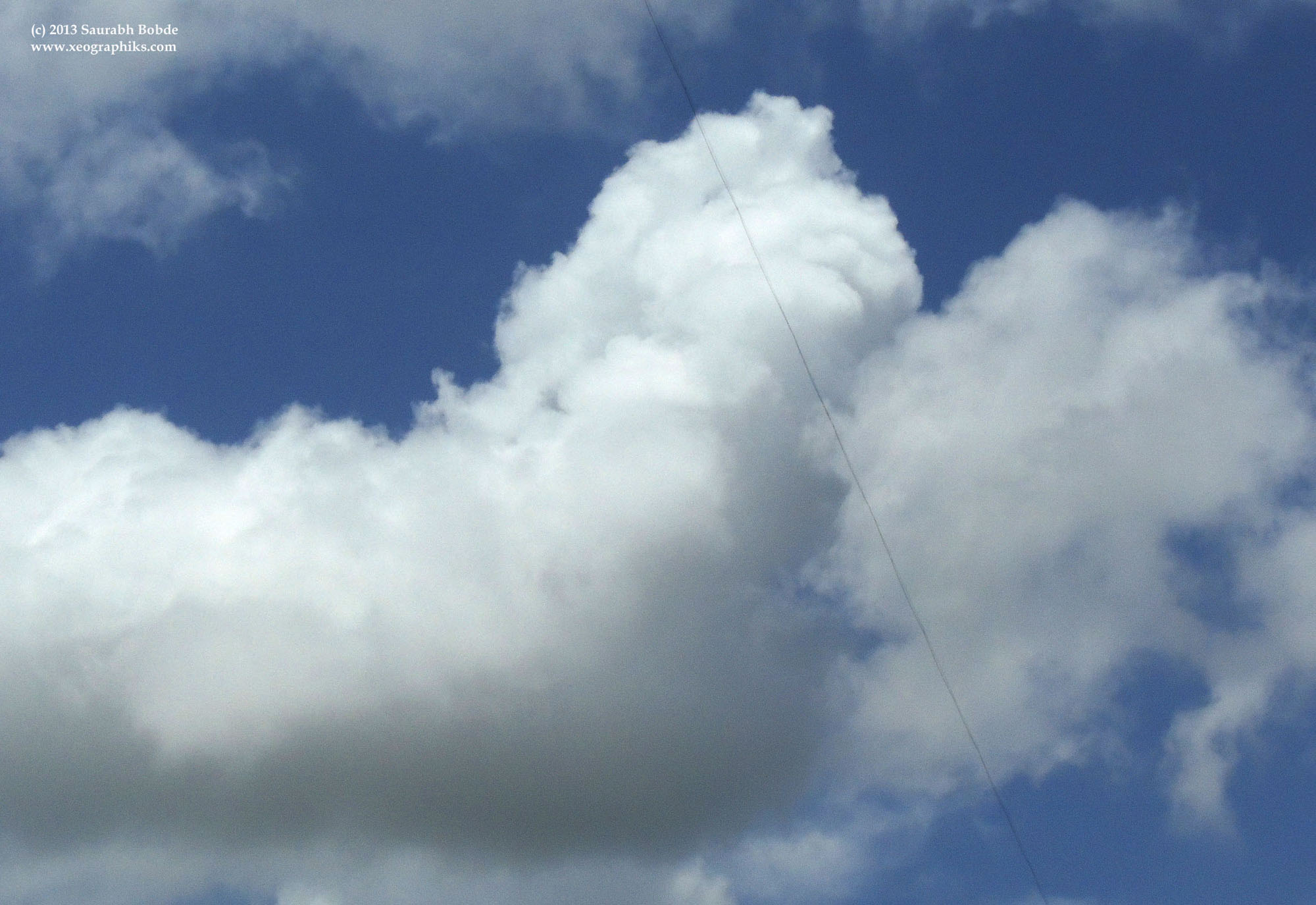 A cloud resembling a sea lion or some other mythical creature.
