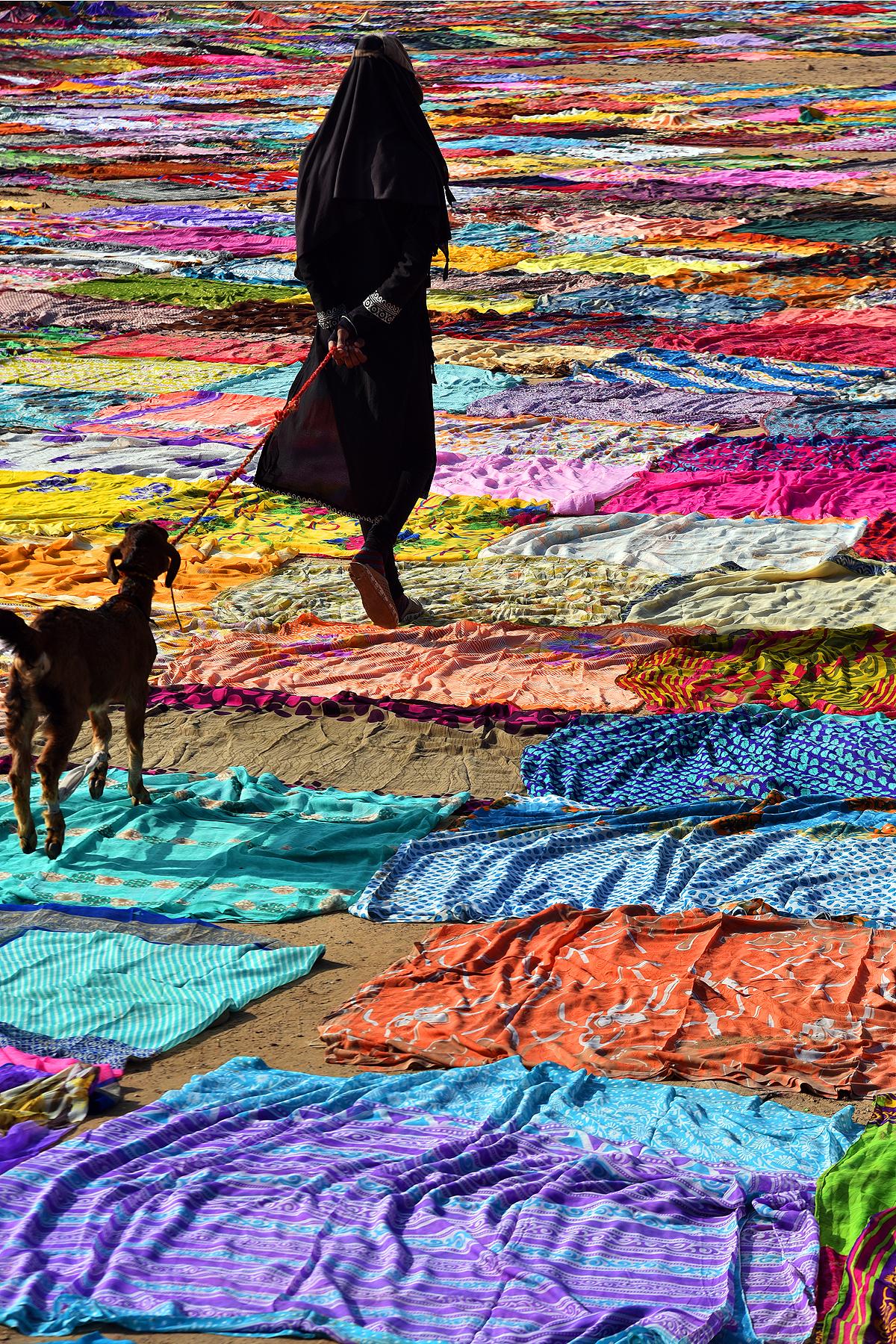 aken from agra dobhi ghut  hen walkin a lady wih her goat though the colourefull dresses ...i felt its like a clourfull deam r a sean in my grandmothers story