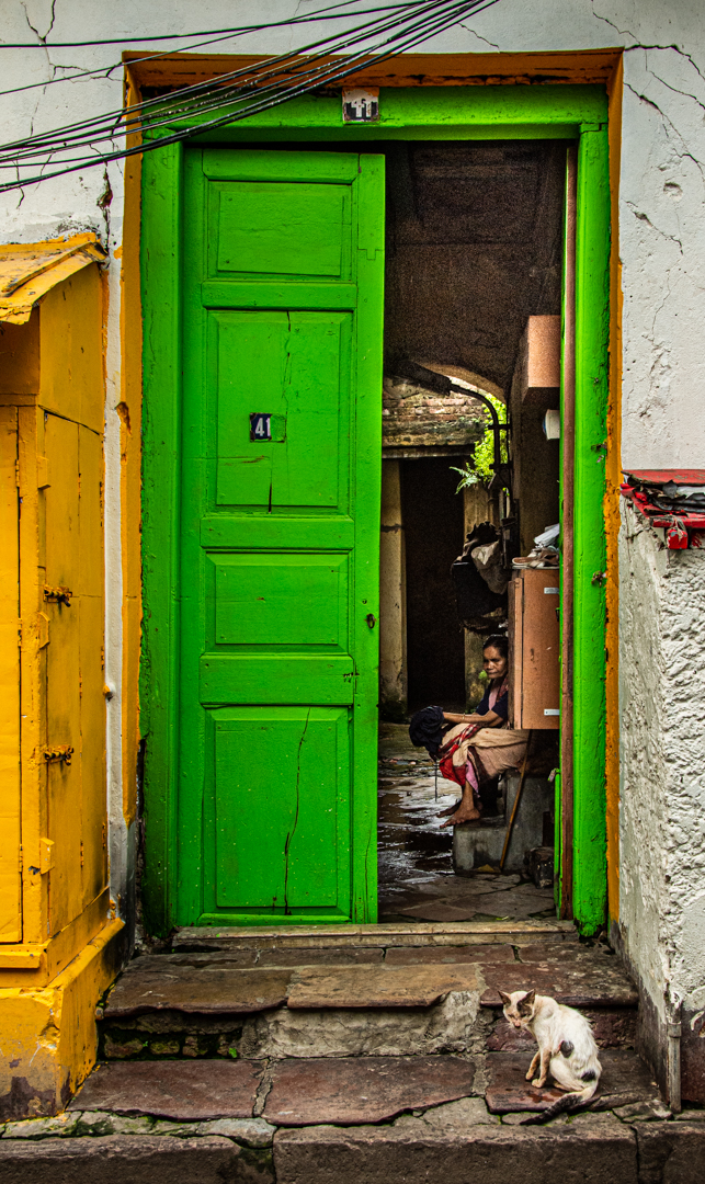 This picture is taken in kolkata, this is a old and broken type house, you can find this kind of house in kolkata. And this cat is playing with the old lady who is a mumber of this house, this speciality of those houses, they welcome everyone.