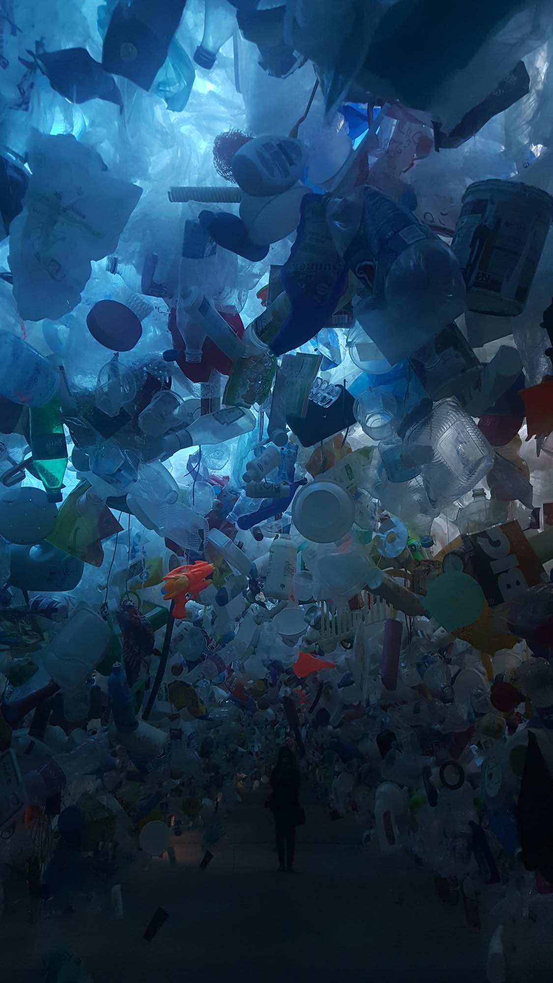 A plastic's abandoned life