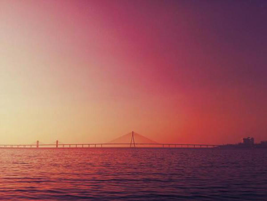 Nothing is more vivid, colorful and joyful as nature's palette. Taken on the road, this bridge truly represents Mumbai.