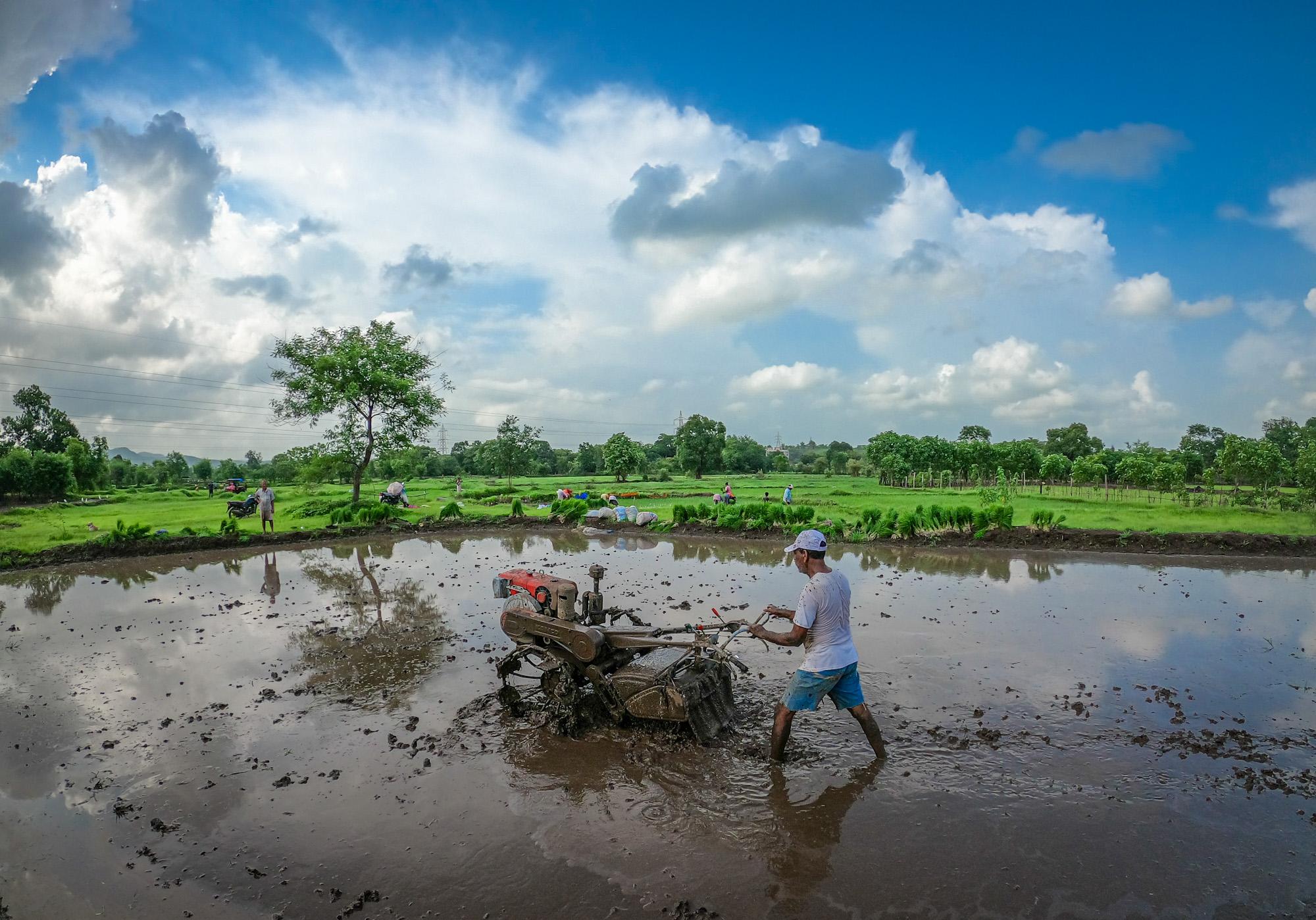Farmer making