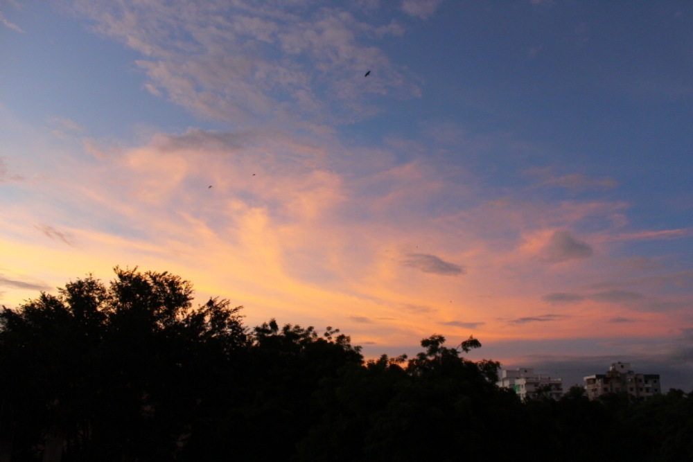 This beautiful Sky view was captured from our house balcony. It was during evening when we were witnessing the breathtaking view of the sunset outside. I like the colors in the sky that makes the entire scenery a picture work clicking.