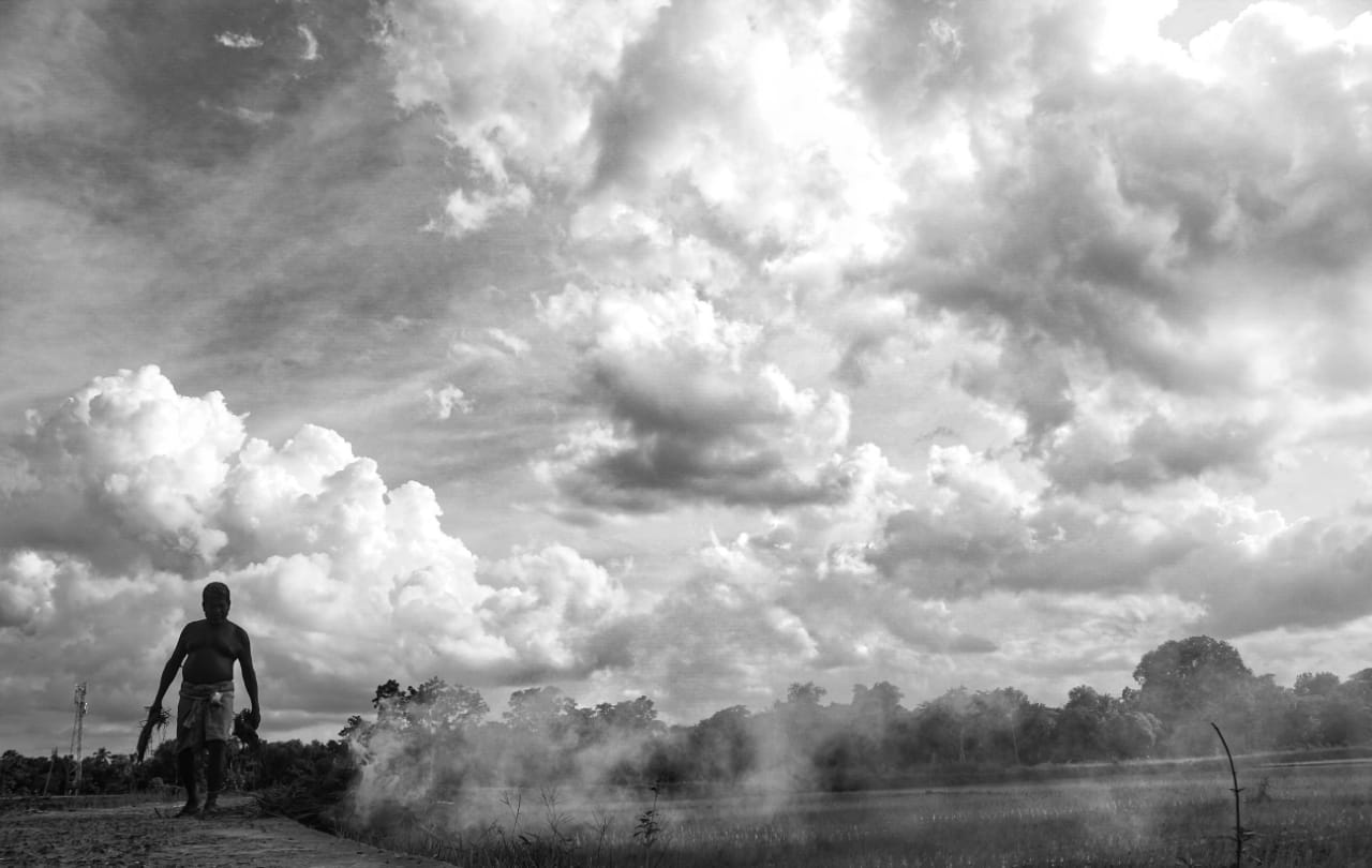 A farmer burning crops and the smoke arising from the crops seems to rise up and mix up with the clouds it seems as if the clouds are being formed from the arising smoke