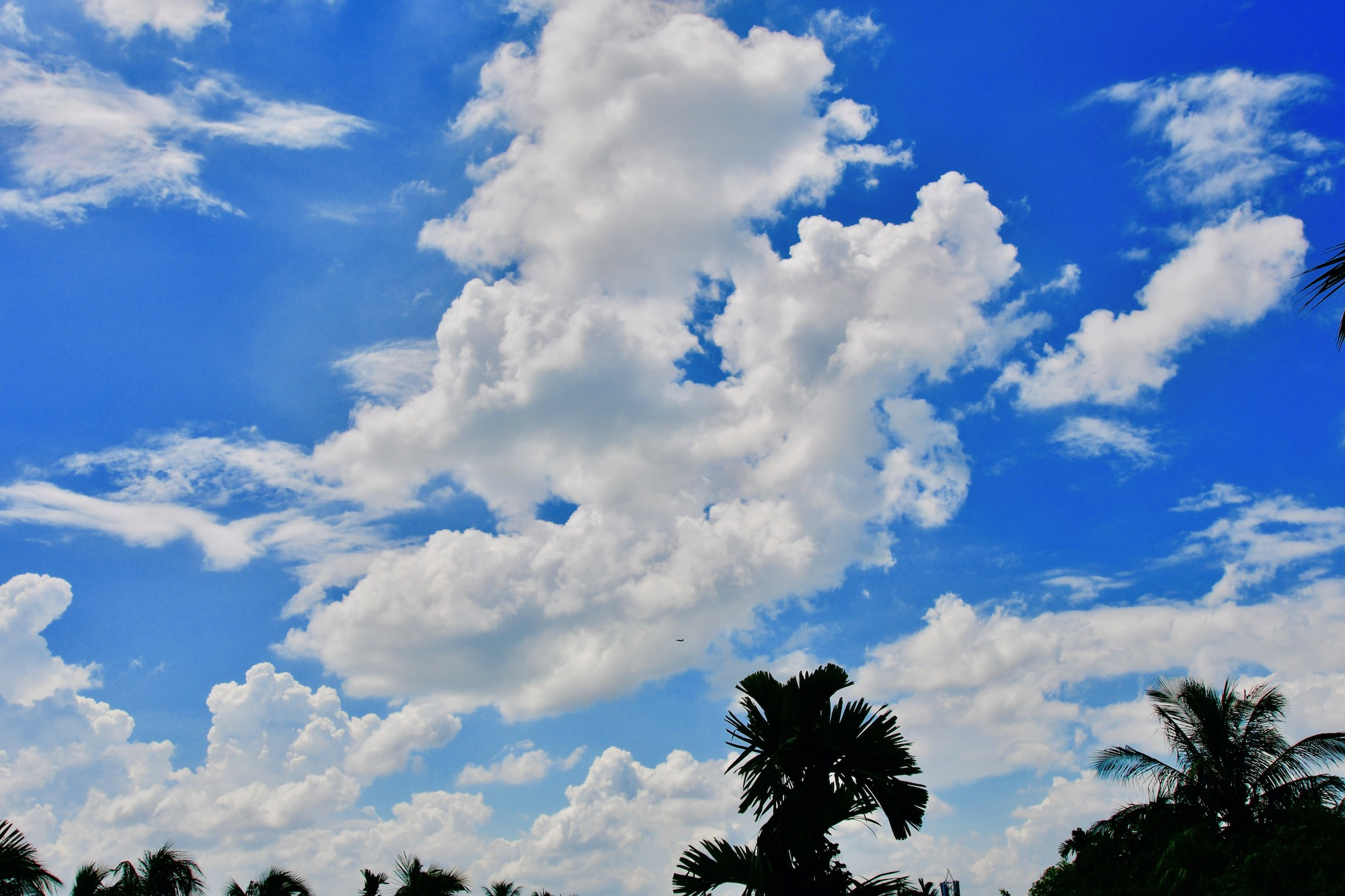 During full monsoon I have taken this formation of cloud from the roof of my house.