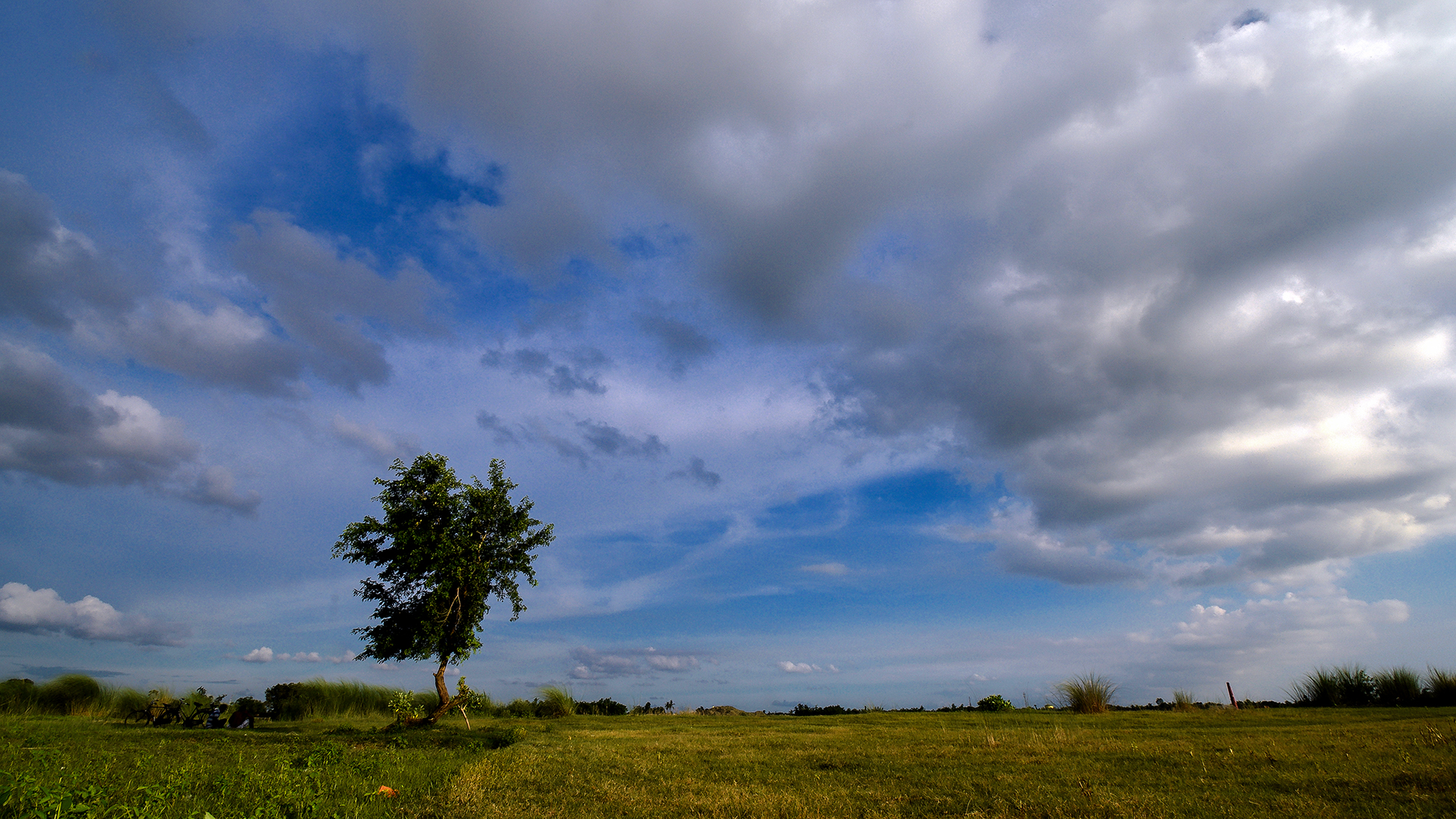 I wondered and stopped to view the bonding between the playful clouds and lonely tree standing alone waiting for rain drops.