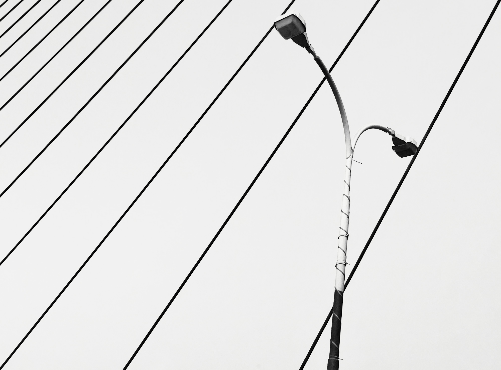 Suspension wires of a major bridge in Kolkata.