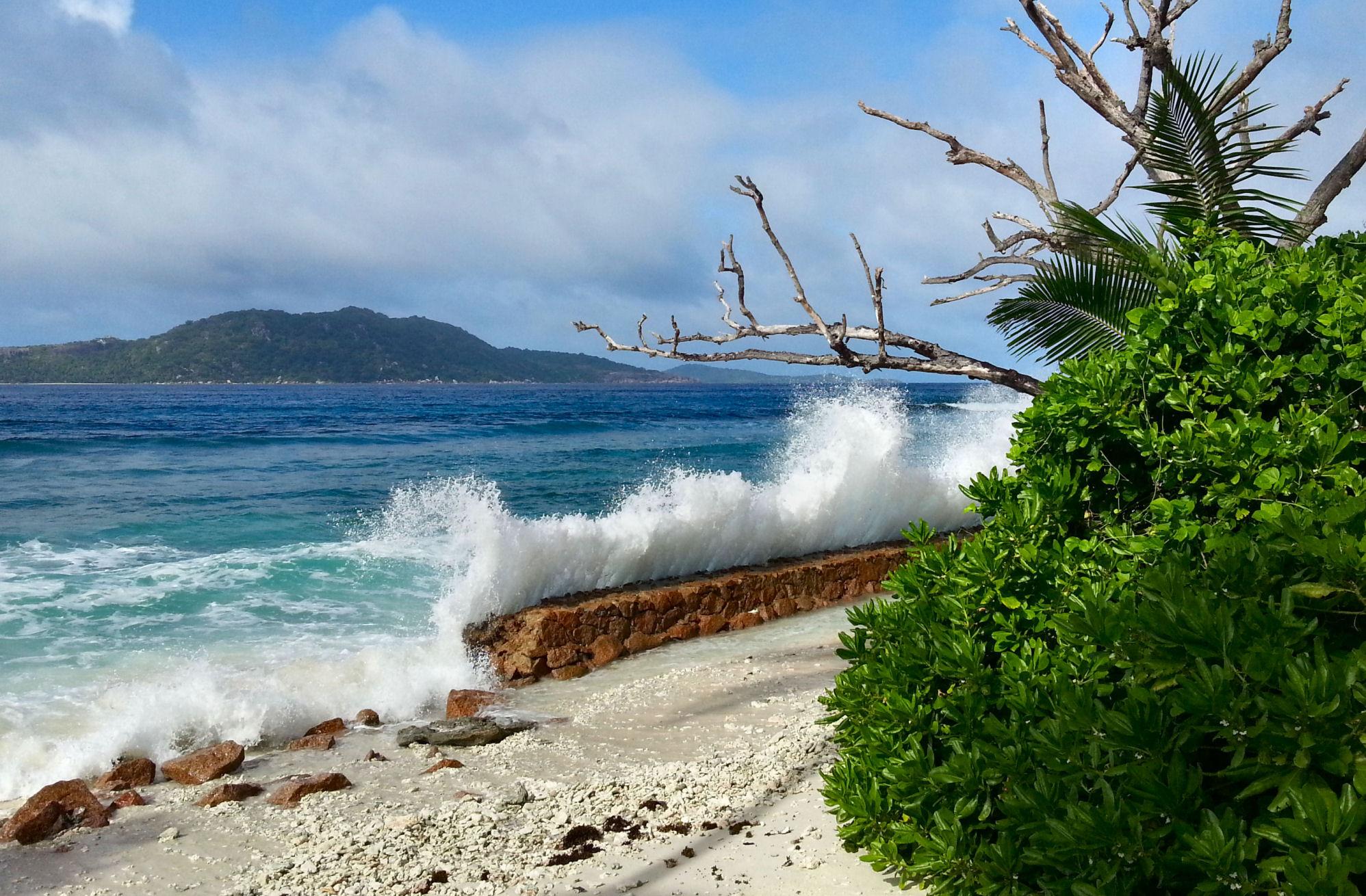 Pic taken in La Digue Island, Seychelles