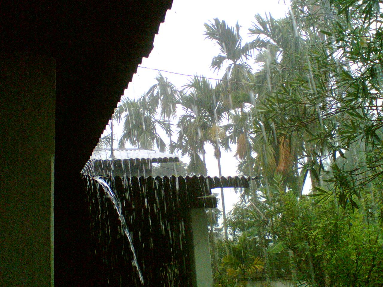 rainwater in my house