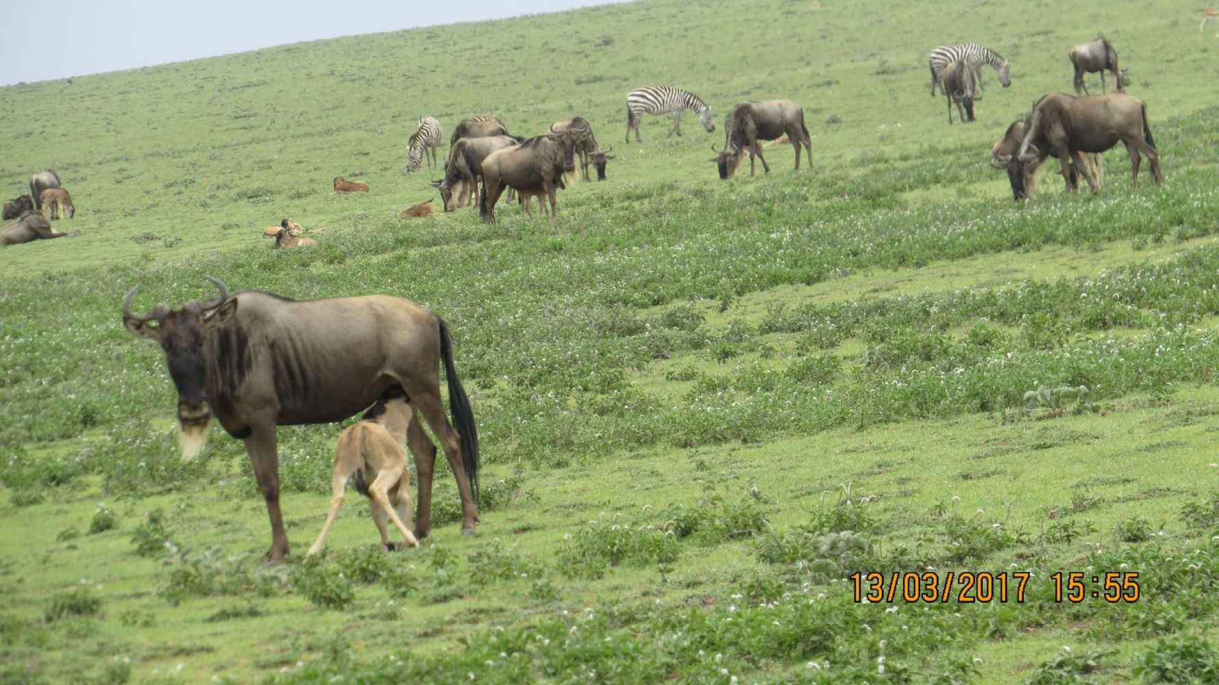 PHOTOSHOOT AT TANZANIA