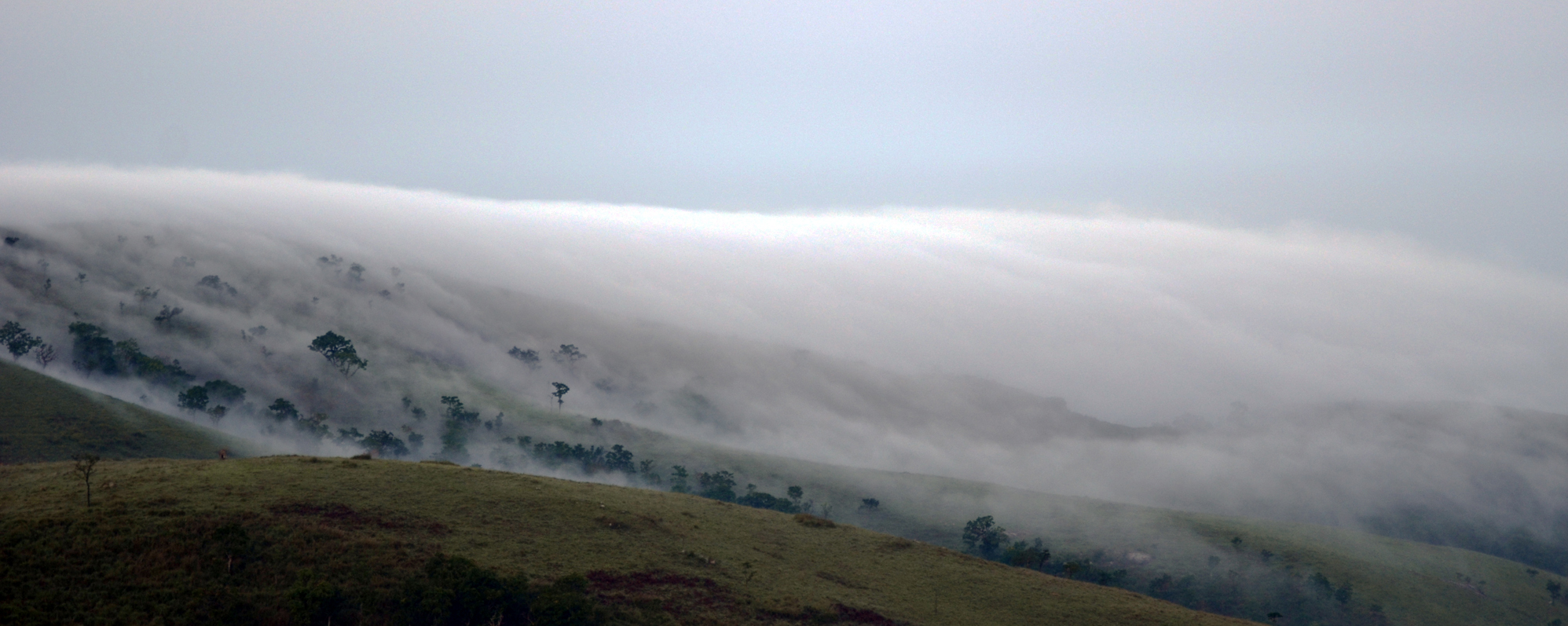 fog covering the hill