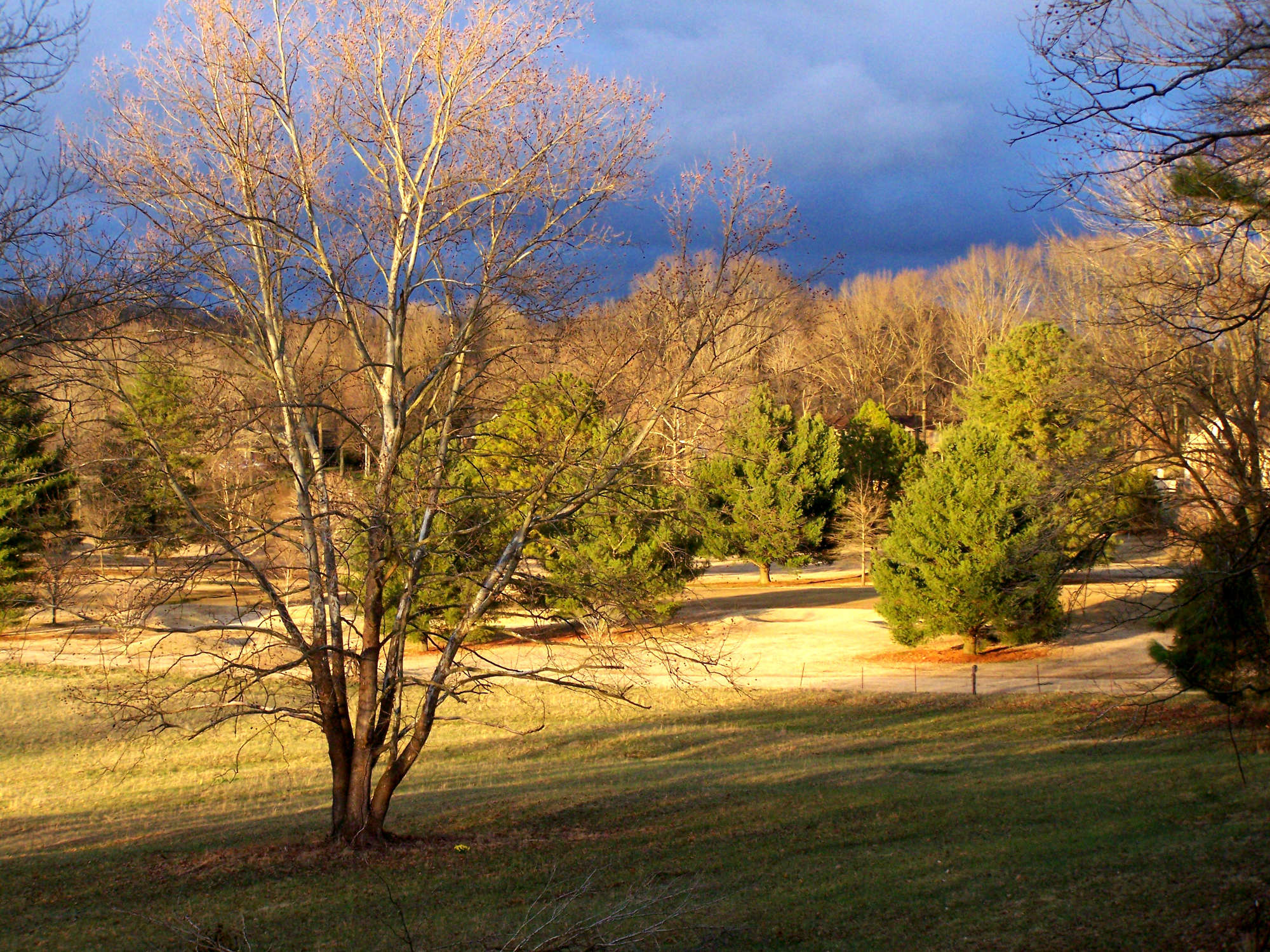 Calm before the storm. My backyard at a previous residence in Tennessee.
