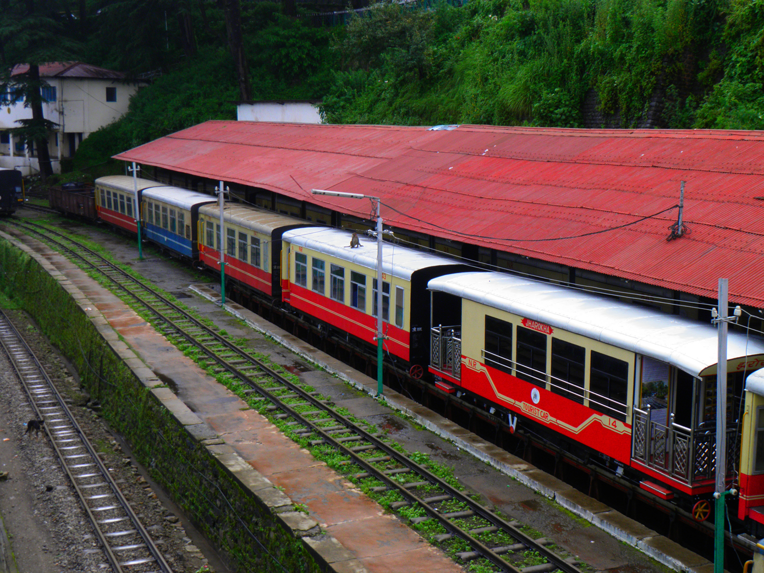 This pic was clicked on Shimla Railway station when this Toy train just arrived.