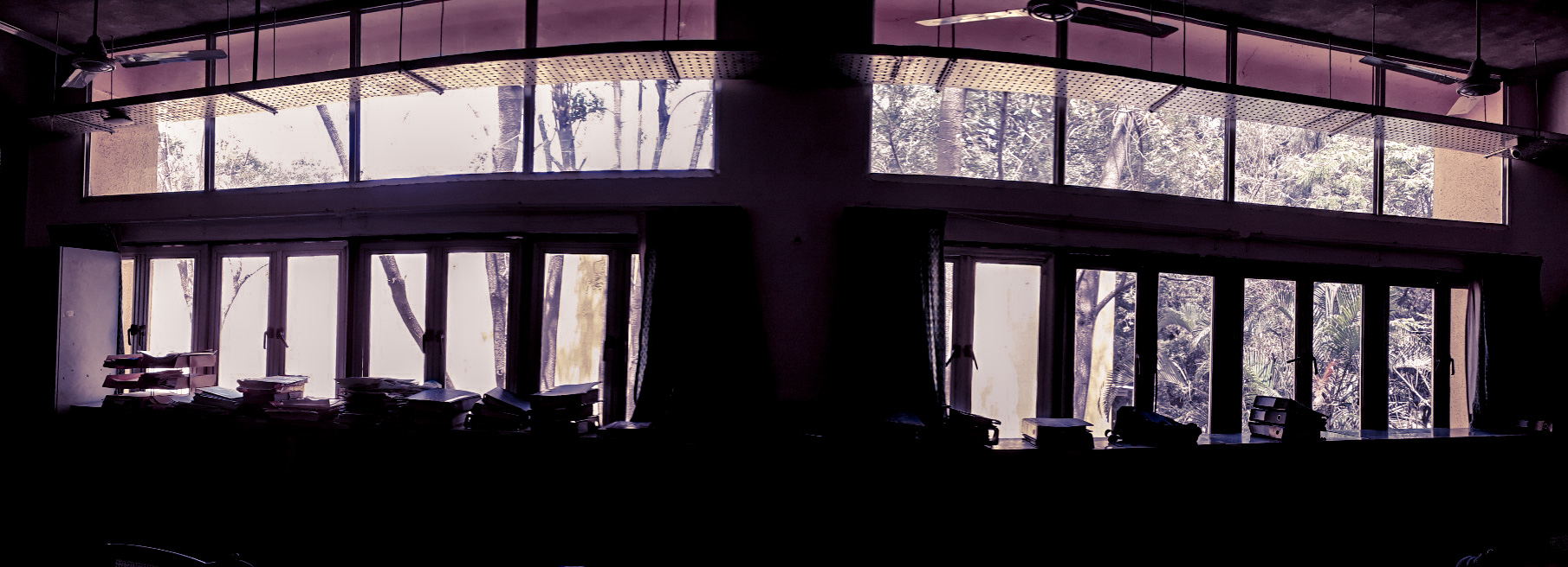We stay confined within the walls of our living spaces busy with our chores - oblivious of the beautiful world outside...