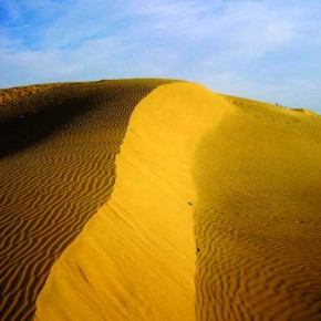 In this image, the positive space occupied by the sand dune dominates the frame and fills up the field of view, making the viewer look up towards the slope of the dune. Photograph/Sushant Verma