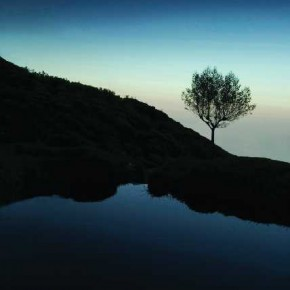 This image exhibits how excess negative space can create a sense of isolation and loneliness. Photograph/Sakthi