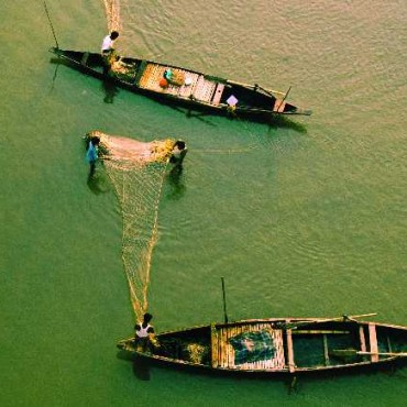 A top angle shot of fishing boats out at work, makes the viewer feel like as if he is peering down at them; while a blue-green expanse of water fills his field of vision. Photograph/Shailendra Singh Rawat