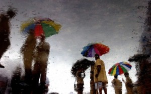 Photograph/Sudipto Das