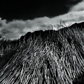 An image from the book entitled Ladakh. Photograph/Prabuddha Dasgupta