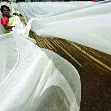 Winner of the first prize: This picture captures a woman working in a maufacturing unit in Tamil Nadu, producing medical cotton bandages. This is perhaps one of the most important uses of cotton. The framing, expression and the white texture all worked extremely well together. Photograph/Senthil Kumaran, Designer, Madurai, Tamil Nadu
