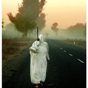 "Title: Yatra ""It was early in the morning and I noticed an old Jain woman slowly walking down an empty road. For me, this photograph signifies her transit from darkness into light."" Camera: Canon EOS 350D Lens: Sigma 200mm ISO: 400 Aperture: f/7.1 Shutterspeed: 1/250sec Photograph/ Jayesh Patel, Gujarat"
