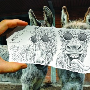 These are my donkeys and I love them! A sense of humour is what matters most while shooting such works.. Photograph/Ben Heine