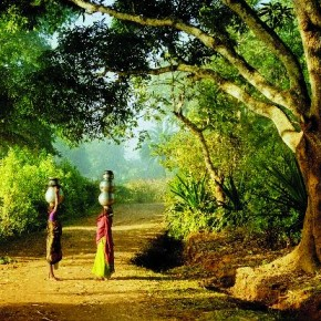 Rural and jungle areas have always been his preferred area to shoot for S Ganapathi Rao. Photograph/ S Ganapathi Rao