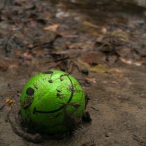 Do not ignore the simplest of elements because even an abandoned ball lying in the mud and slush can make a great subject. Exposure: 1/50sec at f/2 (ISO 200). Photograph/Linden Laserna