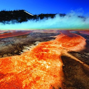 Made in the Yellowstone National Park, USA, this is an image of the colourful organisms that survive in hot geysers. Photograph/ Soumitra Pendse