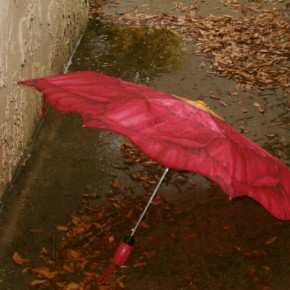 Abandoned or lost umbrellas which fly off in the wind make for a stunning, yet poignant capture. Exposure: N/A. Photograph/S J Franks