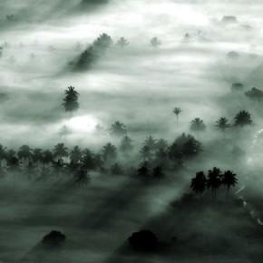 Photograph/Vishak Vardhan