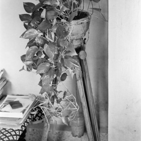 Her house was full of such interesting objects and scenes. This photograph shows an old tripod that served as a stand for a flower pot. Photograph/Ishaan Dixit