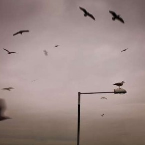 Try to shoot regular subjects from an unconventional point of view. Photograph/Chris Friel